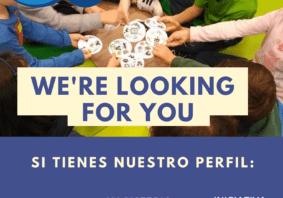 buscamos profesores_